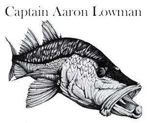 AaronLowman_logo