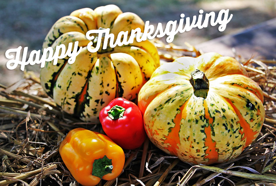Happy Thanksgiving from Seafood Shack - Cortez, Florida
